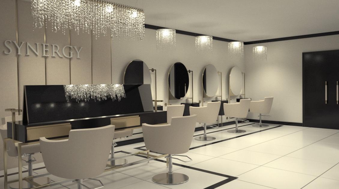 Synergy Salon Design